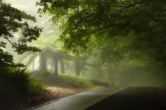 Lluvia del verano en montañas azules Fotos de archivo