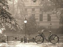 Lluvia del verano en sepia imagenes de archivo