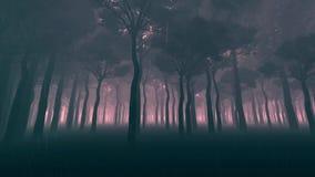 Lluvia en el bosque oscuro almacen de metraje de vídeo