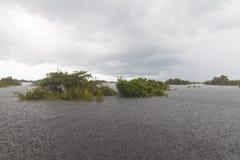 Lluvia en el lago Fotos de archivo