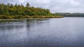 Lluvia en el lago Imágenes de archivo libres de regalías
