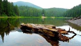 Lluvia en el lago Synevyr, Ucrania almacen de metraje de vídeo