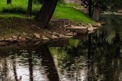 Lluvia en el parque Fotos de archivo