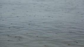 Lluvia en el río almacen de video