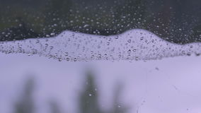 Lluvia en el web metrajes