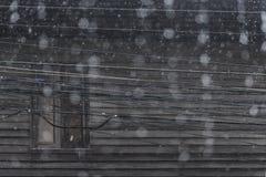 Lluvia en la estación de lluvias en ciudad Foto de archivo