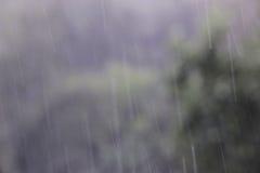 Lluvia en negro Fotos de archivo