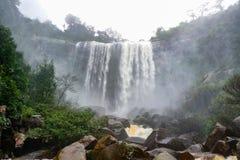 Lluvia Forest Waterfall Fotos de archivo libres de regalías
