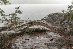 Lluvia fuerte del verano Imagenes de archivo