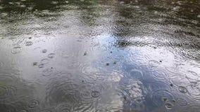 Lluvia ligera al mediodía en el lago Llueva los descensos que bajan en la superficie del lago metrajes