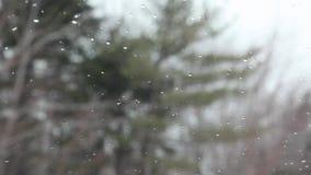 Lluvia o nieve en el escudo de viento almacen de video
