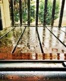 Lluvia pesada Foto de archivo libre de regalías