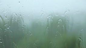 Lluvia sobre el vidrio almacen de video