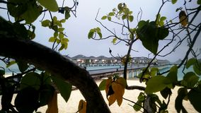 Lluvia tropical en los Maldivas almacen de video