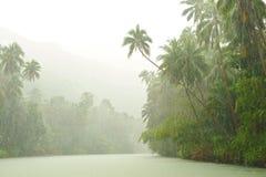 Lluvia tropical sobre el río Foto de archivo