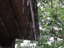 Lluvia y tejado almacen de video