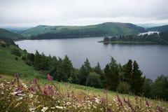 Llyn Clywedog Reservoir near Llanidloes Powys Wales Royalty Free Stock Image
