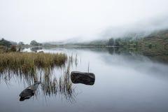 Llyn Crafnant风景早晨有雾的秋天在Snowdo 库存图片