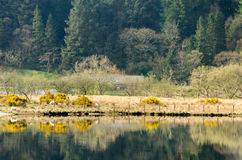 Llyn Cwellyn Snowdonia stock afbeelding