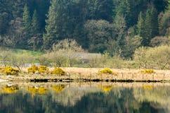 Llyn Cwellyn Snowdonia. Landscape of early spring time at Llyn Cwellyn Snowdonia Wales Stock Image