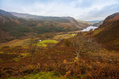 Llyn Dinas Stock Photo