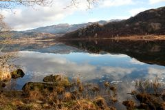 Llyn Dinas reflections Royalty Free Stock Photo
