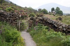 Llyn Dinas Valley near Beddgelert Royalty Free Stock Images