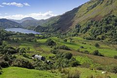 Llyn Gwynant Royalty Free Stock Photography