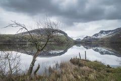Llyn Nantlle的美好的冬天风景图象在Snowdonia Na的 免版税图库摄影