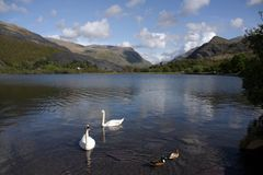 Llyn Padarn Royalty Free Stock Photo