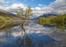 Llyn Padarn Stock Photo