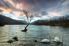Llyn Padarn在Snowdonia 免版税图库摄影