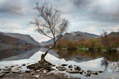 Llyn Padarn in Wales. Dusk at Llyn Padarn in Snowdonia National Park in Wales stock photo