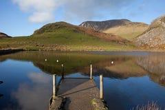 Llyn Y Dywarchen een visserijmeer Stock Foto
