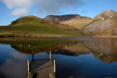 Llyn Y Dywarchen a fishing lake Royalty Free Stock Photo