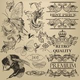 Éléments décoratifs de vecteur de vintage pour la conception Photographie stock libre de droits