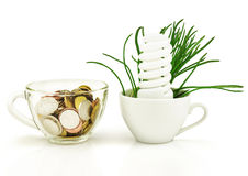 Lámpara ahorro de energía, dinero, hierba, taza, concepto Foto de archivo libre de regalías
