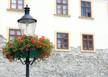 Lámpara con las cestas de la flor de la ejecución Fotografía de archivo