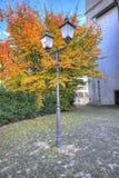 Lámpara de calle con las hojas de otoño Foto de archivo libre de regalías