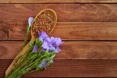 Lnów ziarna w drewnianej łyżce z linum Lin i roślinami kwitną na v Zdjęcia Stock