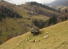 Ländlich idyllisch Landschaft Lizenzfreie Stockfotos