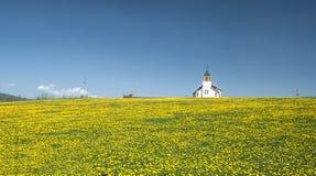 Ländliche Kirche auf einem Gebiet Lizenzfreies Stockfoto