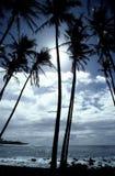 Línea de la playa hawaiana tropical Fotos de archivo