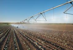 Línea de la rueda de la irrigación Imagen de archivo libre de regalías