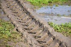 Línea de la rueda del vehículo de la irrigación Imagenes de archivo