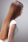 Lång Hair.Beautiful-kvinna med sunt brunt hår. Royaltyfri Fotografi