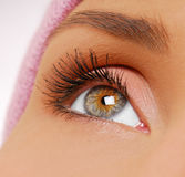 långa svarta ögonfranser för skönhet Royaltyfria Bilder