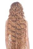 Långt blont hår Royaltyfria Foton