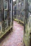 LNK Infotree vid Karosas Europos anoraker vilnius lithuania Arkivbild