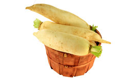 Lo Bok known as Daikon, or Winter Radish too Royalty Free Stock Image